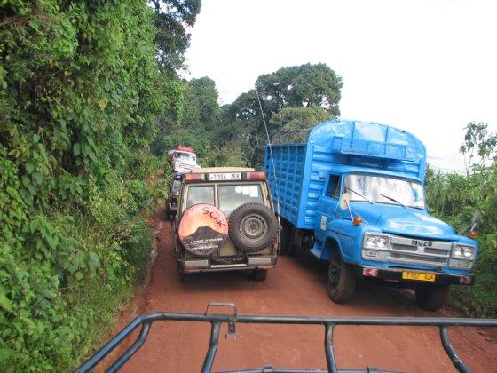 E.Visakavičiaus nuotr./Siauras kelias nuo kalno Tanzanijoje