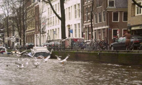R.Trukanavičiūtės nuotr./Amsterdamas