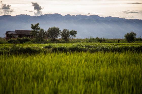 B.Tilmantaitės nuotr./Gyvenimas aplink antrą didžiausią Mianmaro ežerą Inle