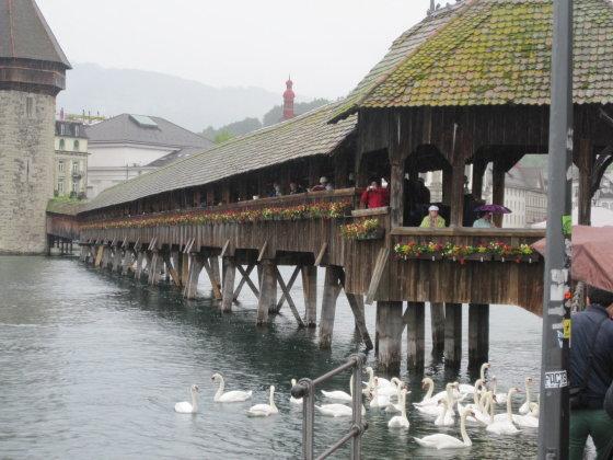 Pasivaikščiojimas po šveicarų Liucernos miestą