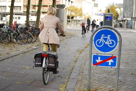 Gerdos Kalpokaitės nuotr./Kaip važiuoji, taip ir gyveni: danai ir jų dviračiai