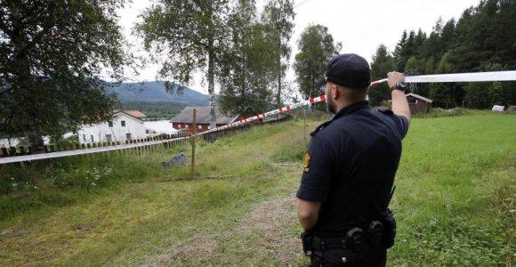 Lietuvio mirtimi pasibaigusių išgertuvių byla: vienas įtariamasis paleistas