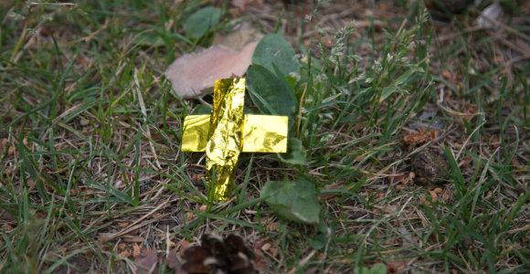 """Summerburst"" atgarsiai: Vingio parkas tebeblizga nuo šventinių festivalio konfeti"