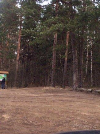Sonatos asmeninio albumo nuotr./Nepilnametis užpuolė merginą Tauragės miške