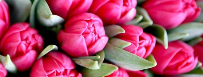 Šarūno Mažeikos/BFL nuotr./motinos dienai dovanojamos gėlės
