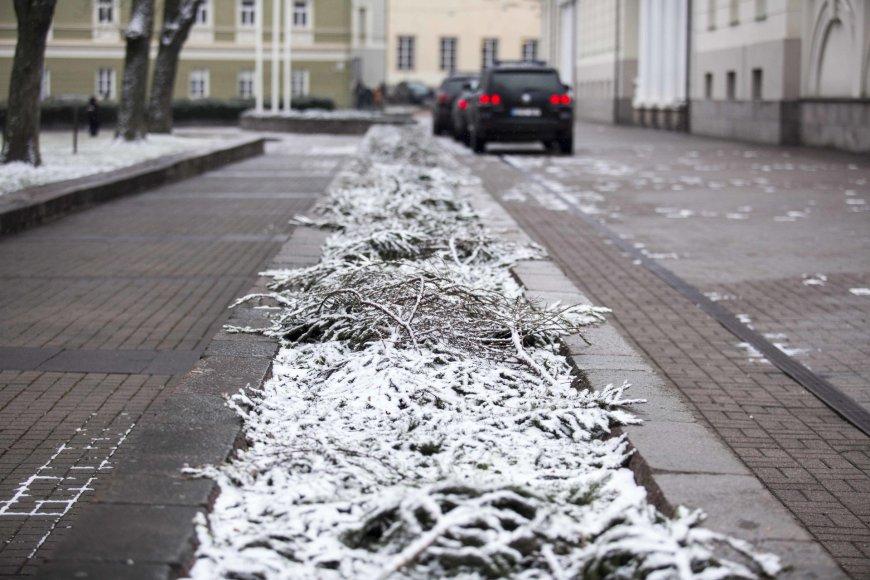 Į Vilnių sugrįžo sniegas